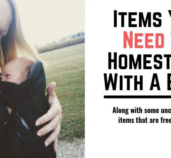 Items You Need To Homestead With A Baby